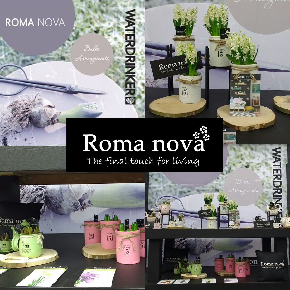 Roma_nova_Waterdrinker_collage