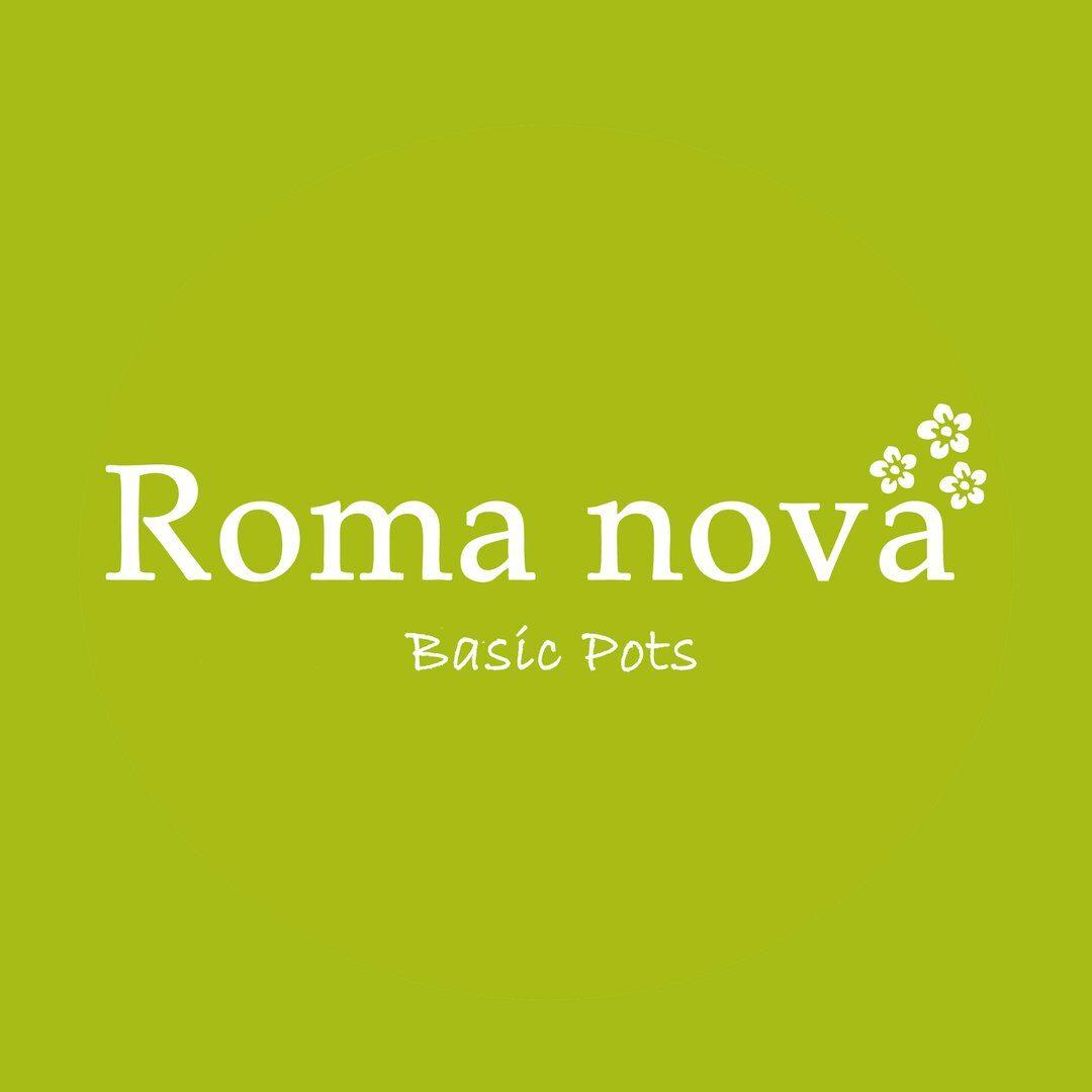 romanova.basicpots